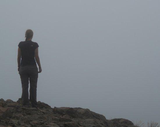 Ascending Path: A Walk in The Clouds!