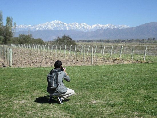 Vendimia Wine Tours: Bodega Achaval Ferrer