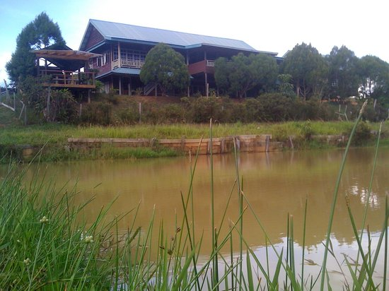 The Ngimat Ayu House Bario