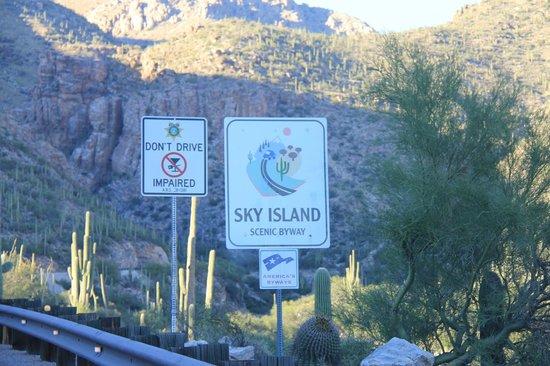 Mt. Lemmon Scenic Byway: Sky Island Highway