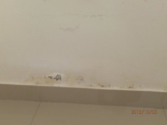 Bali Ayu Hotel : Mould on bedroom walls