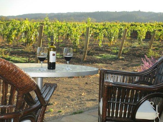 deLorimier Winery & Vineyard Lodging : deLorimier Artisan Suite Patio
