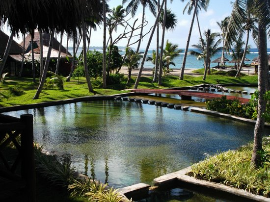 Coconuts Beach Club: View from the tree house room