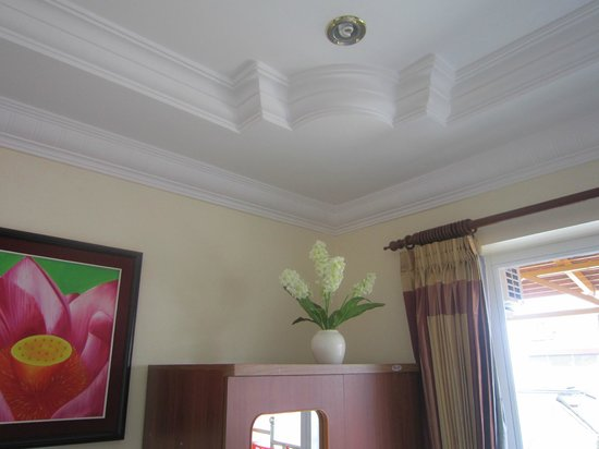 Fancy Guest House: Ornate ceiling
