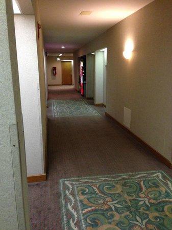 BEST WESTERN PLUS Inntowner Madison: Hallway