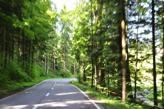 Gurnigelbad, Suisse : дорога