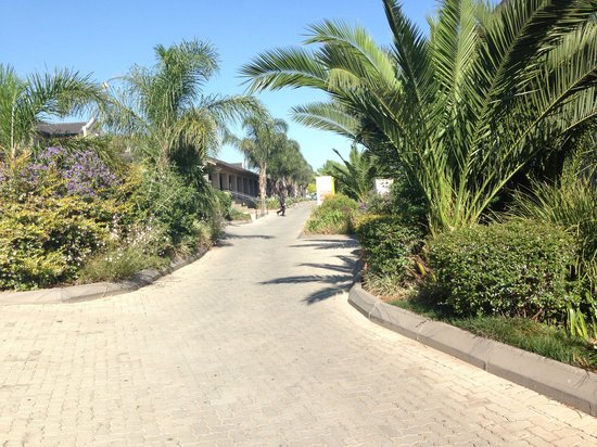 Birchwood Hotel: Driveway to reception