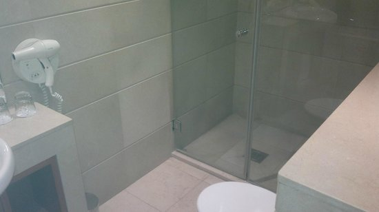Park Plaza Victoria London: Suite 806 walk in shower