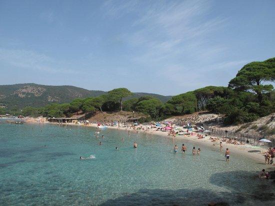 Plage de Palombaggia: Palombaggio beach