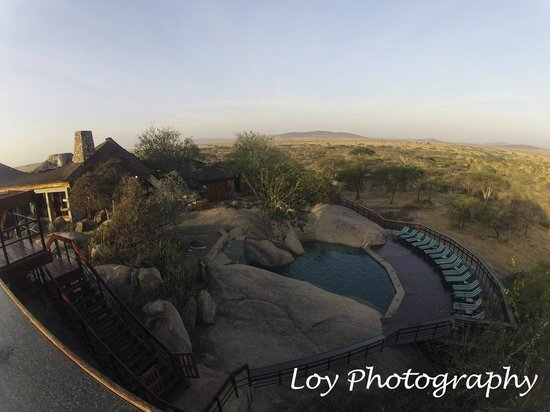 Seronera Wildlife Lodge: pool and ourdoor bar area