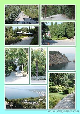 Yalta Intourist Hotel: Парк