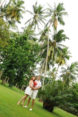 The Surf Hotel: wedding