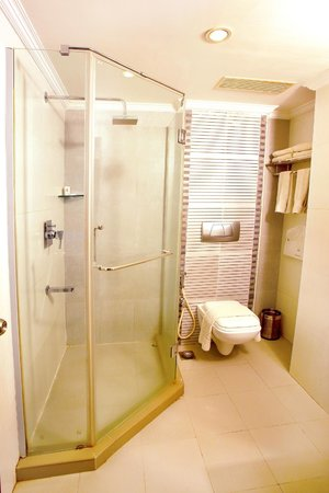 The Senate Hotel: Suite room shower/ toilet