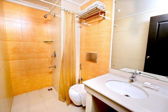 The Senate Hotel: Executive room toilet 2
