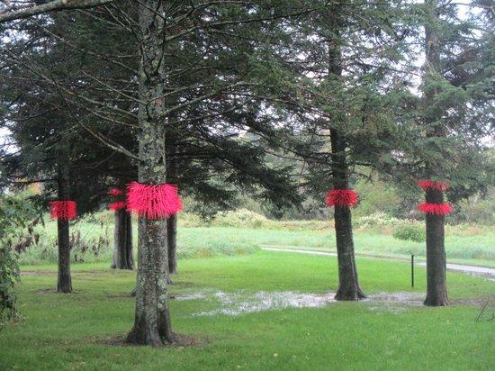 Stowe Recreation Path : 07