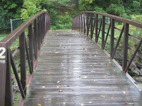 Stowe Recreation Path: 05