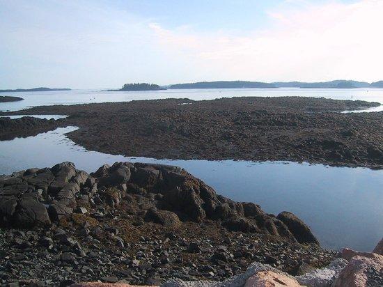 Vermilion Lakes: Lake loise