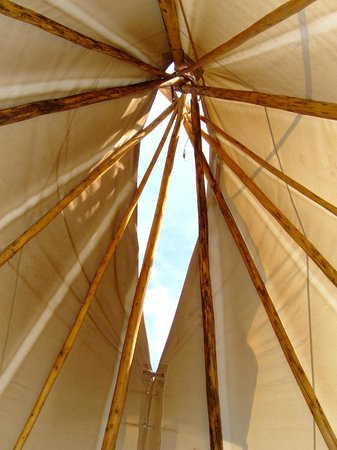 Wolf Paw Tipi Village: The view while lying on the bed looking at the tipi poles.