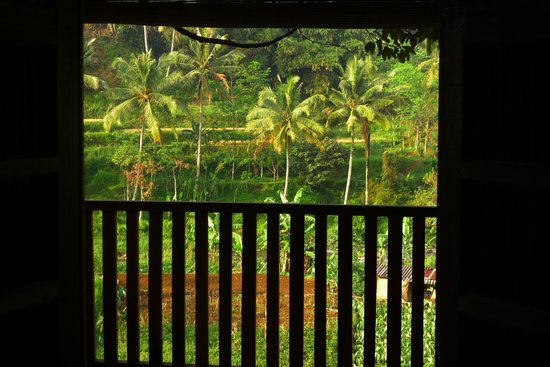 GG House - Happy Valley: window view