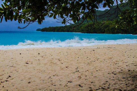 Champagne Beach: Beach 1