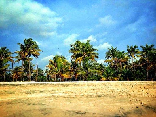 Abad Turtle Beach: beach