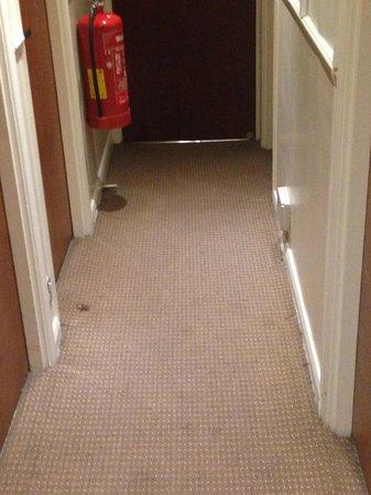 Westbury Hotel Kensington : moquette del corridoio