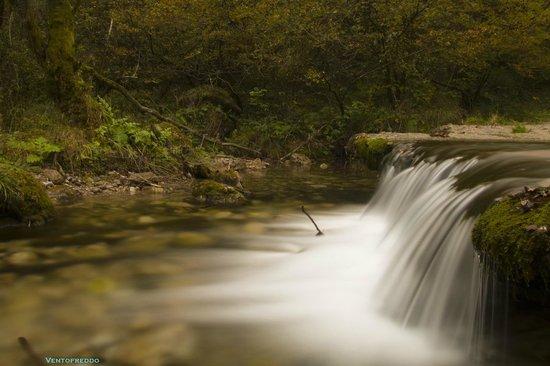 Valle Vertova : Risalendo il torrente #4