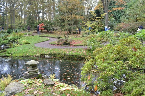 Japanese Garden: View across the pond