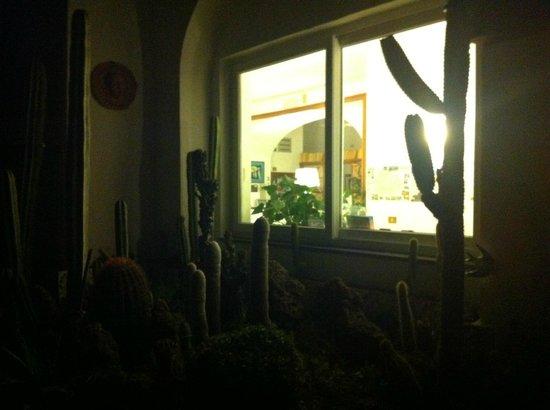 Hotel Villa Maria: Il giardino
