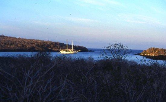 Galapagos Natural Life - Day Tours : nice view