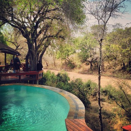 Imbali Safari Lodge: Quiet time!