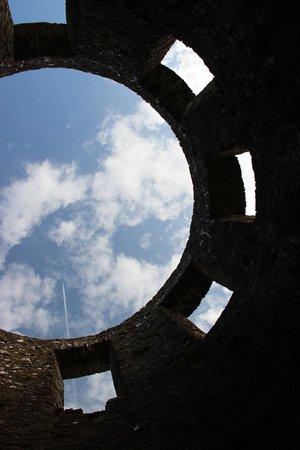 Dinefwr: Castle turret