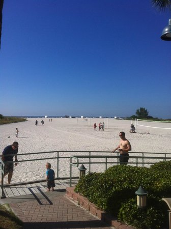 Sheraton Sand Key Resort : Pool to Beach