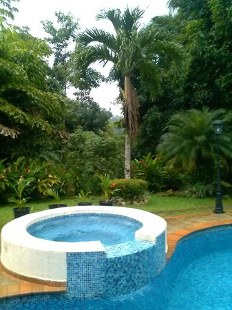 Albrook Inn: pool area
