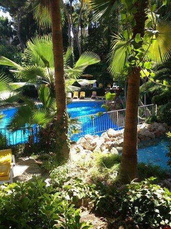 Hotel BonSol Resort & Spa: En härlig trädgård!
