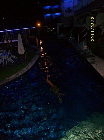 Wild Orchid Resort: 深夜のプール