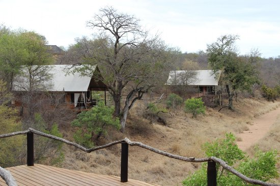 Garonga Safari Camp : View of camp
