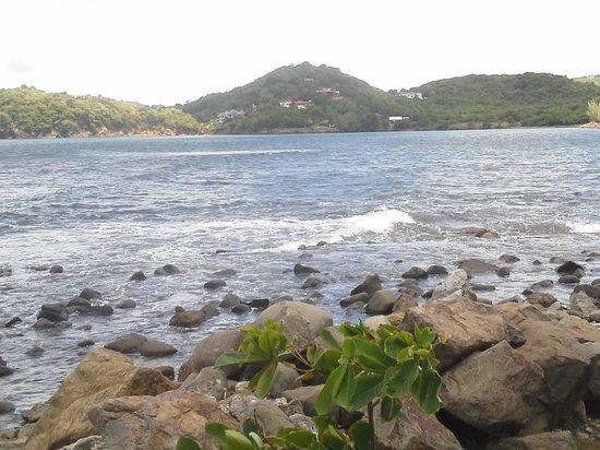 Bay Gardens Hotel: piegon island
