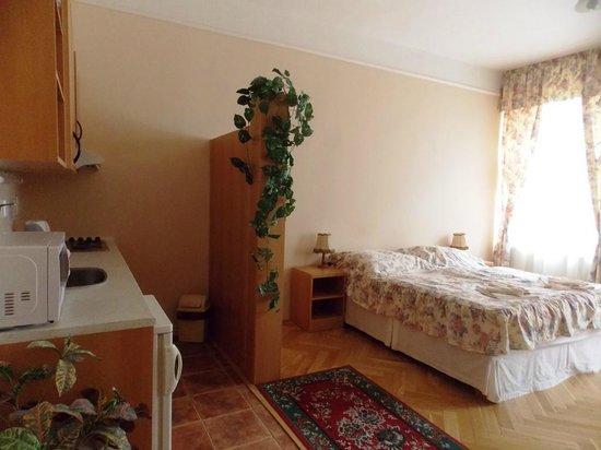 Aparthotel Lublanka: Номер