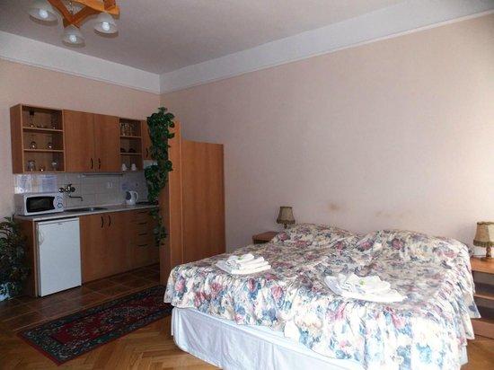 Aparthotel Lublanka : Номер