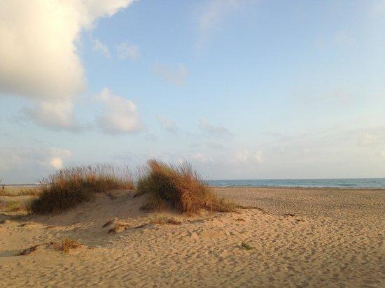 IBEROSTAR Saidia: beach