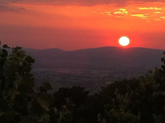 Agriturismo Villa Gabbiano: tramonto dalla camera