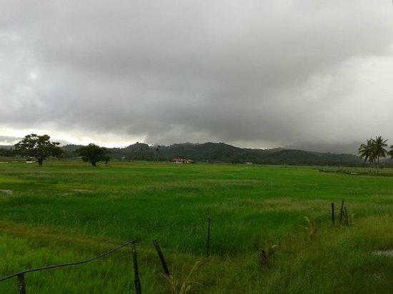 Pondok Muara Chalet: surrounding