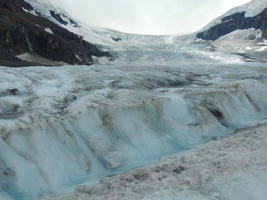 Columbia Icefield Glacier Adventure: awe inspiring