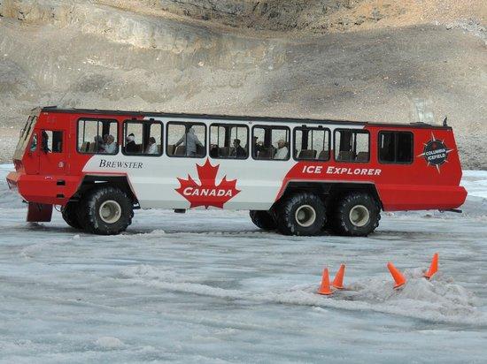 Columbia Icefield Glacier Adventure: transport