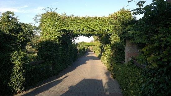 Hotel & Resort Sant'Anna del Volterraio : ingresso