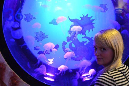 SEA LIFE Helsinki: Our Trip in Helsinki