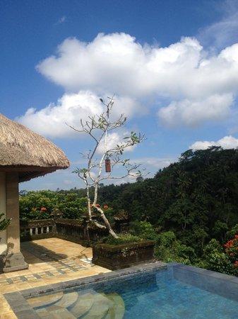 Puri Wulandari Boutique Resort: By our pool.