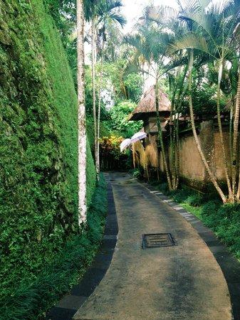 Puri Wulandari Boutique Resort: Walking in the resort.