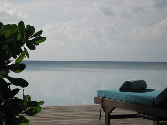Veligandu Island Resort & Spa : Infinity pool